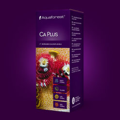 CaPlus1