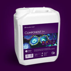 component1+