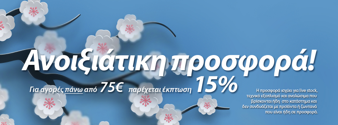 spring_offer